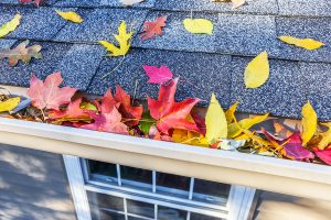 Fall Home Maintenance Checklist for your Bremerton, WA