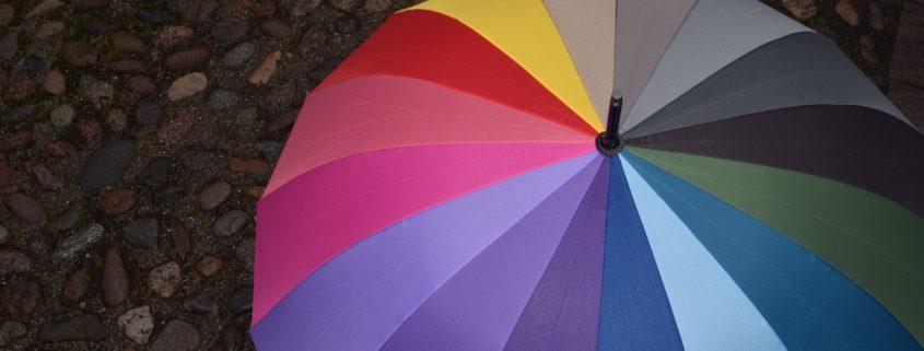 Personal Umbrella Insurance Bremerton, WA